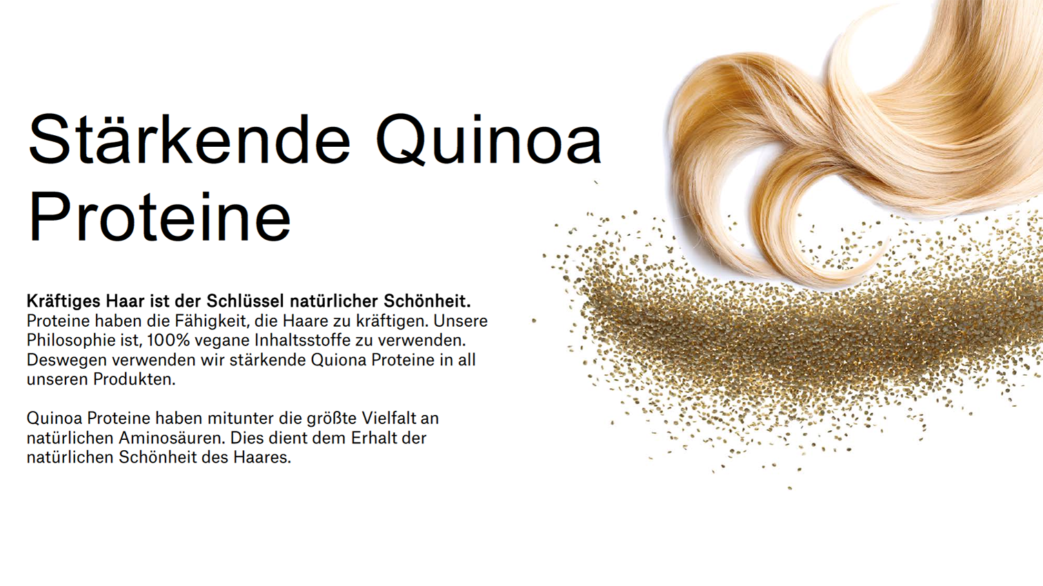 REF_Quinoa_KOnzept