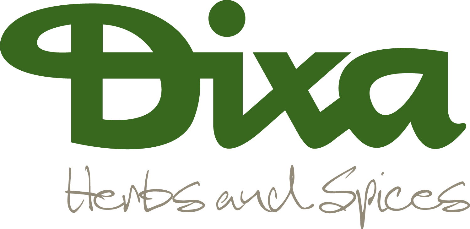 Logo_Dixa_bear